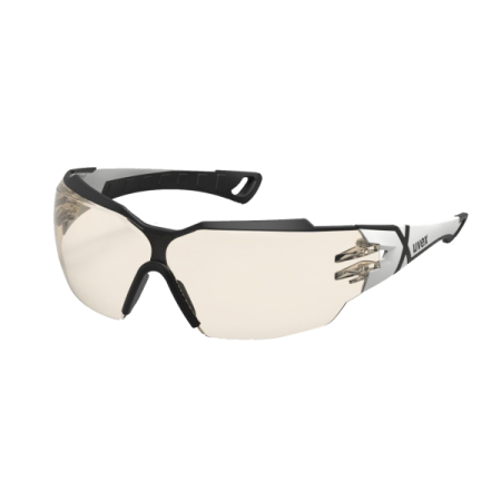 Uvex 9198064 Pheos Cx2 Koruyucu Gözlük