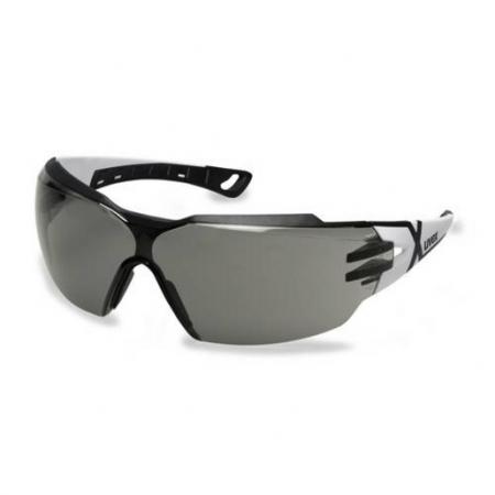 Uvex 9198237 Pheos Cx2 Koruyucu Gözlük